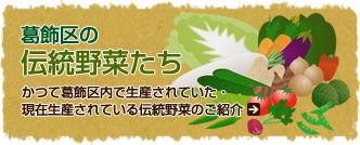 地元で育った元気野菜【葛飾元気野菜のご紹介】葛飾区で栽培されている野菜は実に豊富。四季を彩る地域の野菜が一年中を通して栽培されています。